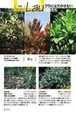 【特集】フラダンサーが知りたい! ハワイの神聖な植物そして鳥たち